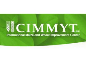 CIMMYT-logo