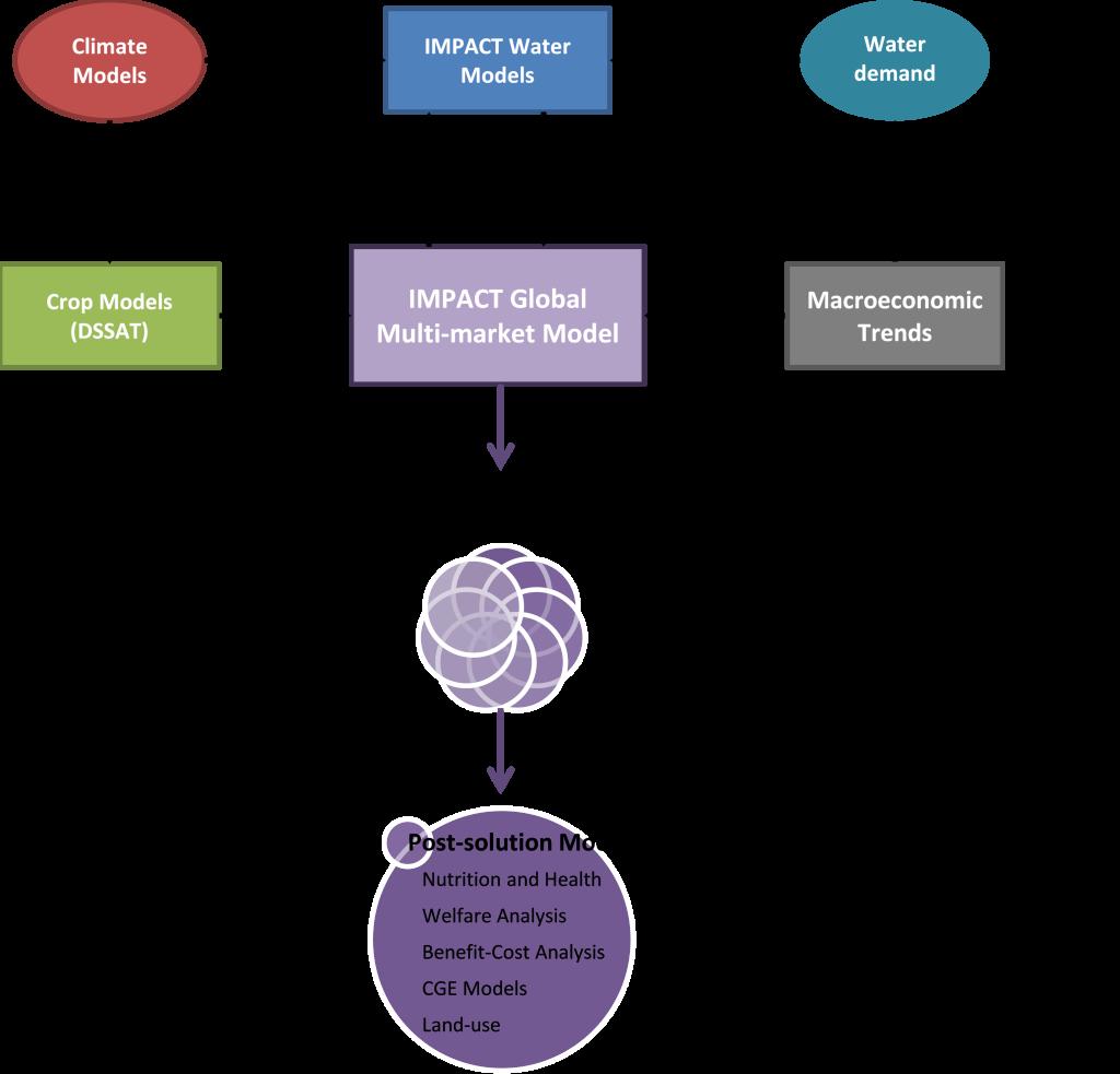 Figure 1- IFPRI's IMPACT Model