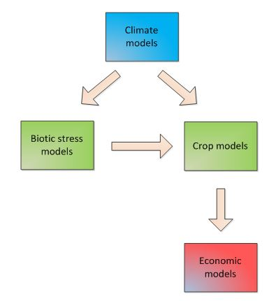 Figure: Example of linkages among biophysical and economic models.